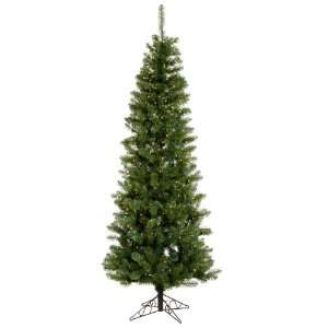 8.5 Pre Lit LED Salem Pine Pencil Artificial Christmas