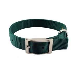 Gear Double Layer Nylon Dog Collar, 20 Inch, Hunter Green Pet