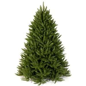 Frasier Fir Artificial Christmas Tree   9 Green