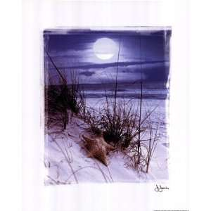 Liebermans C01JJ180 John Jones Moonlight 11.00 x 14.00