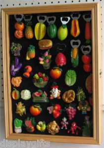 Kitchen and Fridge Magnet Display Case with glass door