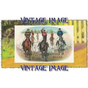 Pack of 4, 6 inch x 4 inch (14 x 10 cm) Gloss Stickers Horses Ahead